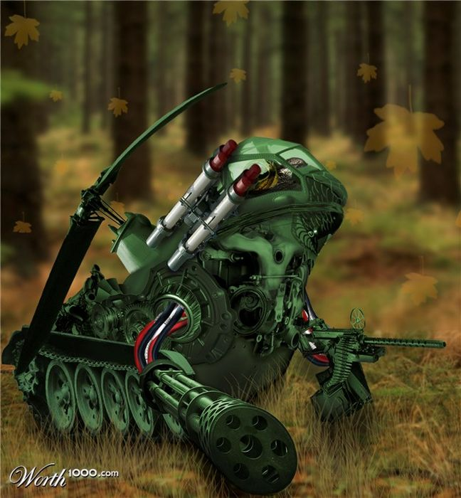 Chop A Frog (18 pics)