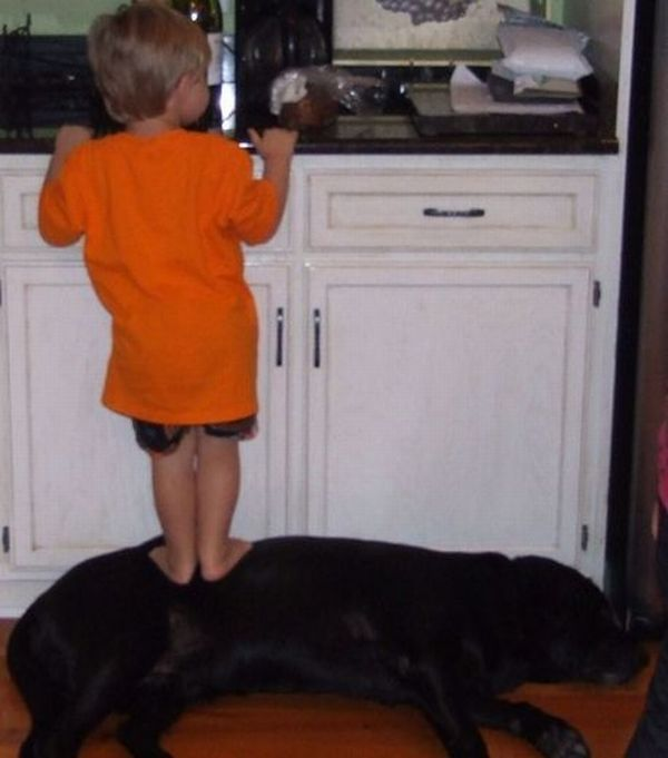 Kids with Pets (9 oics)