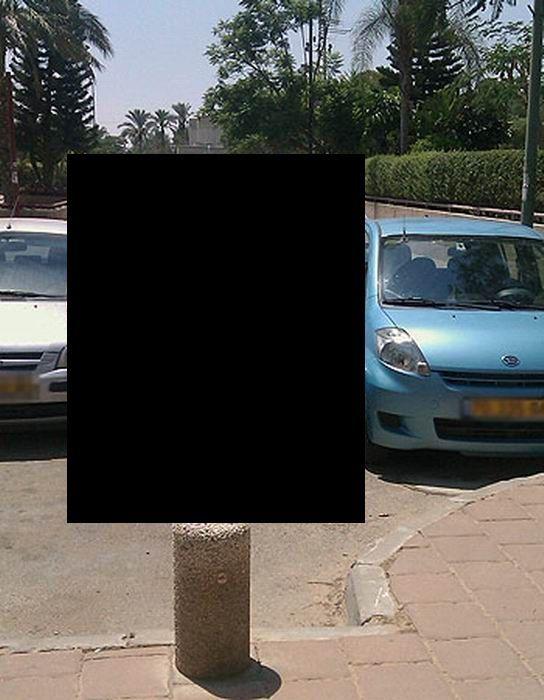 Parking Like a Boss (2 pics)
