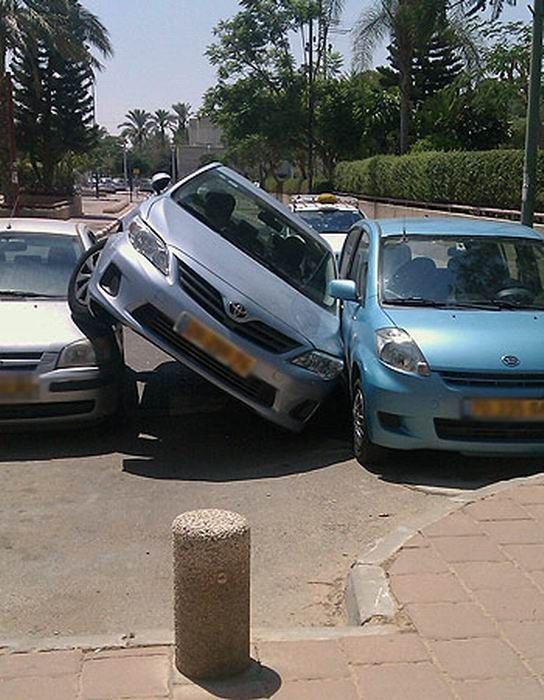Parking Like a Boss (2 pics)
