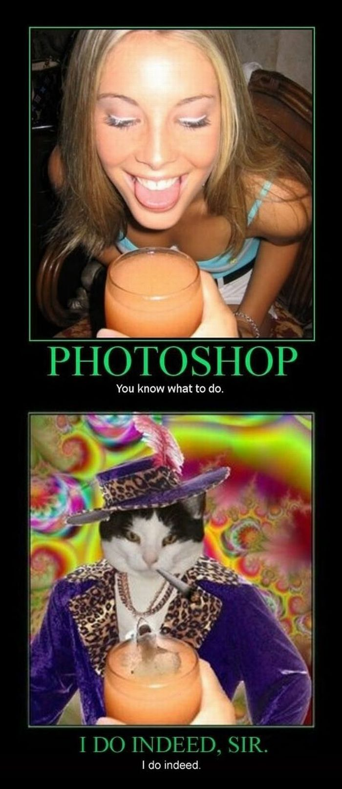 Funny Demotivators (130 pics)