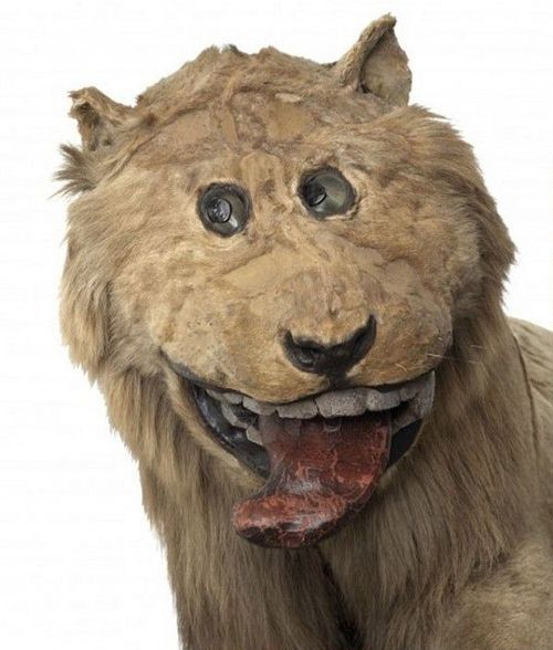 Sweden's Fantasy Lion (3 pics)