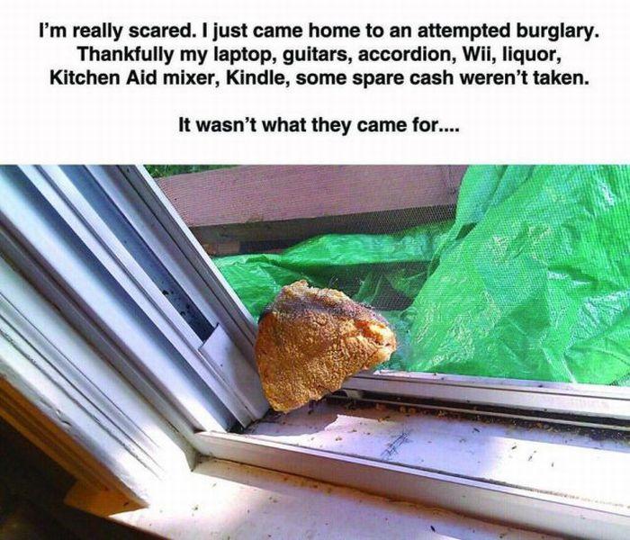 Strange Burglary (7 pics)