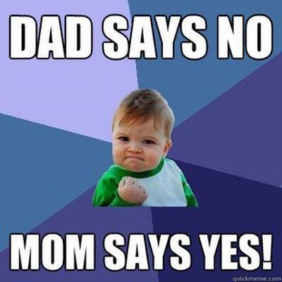 Hilarious Success Kid Meme (50 pics)