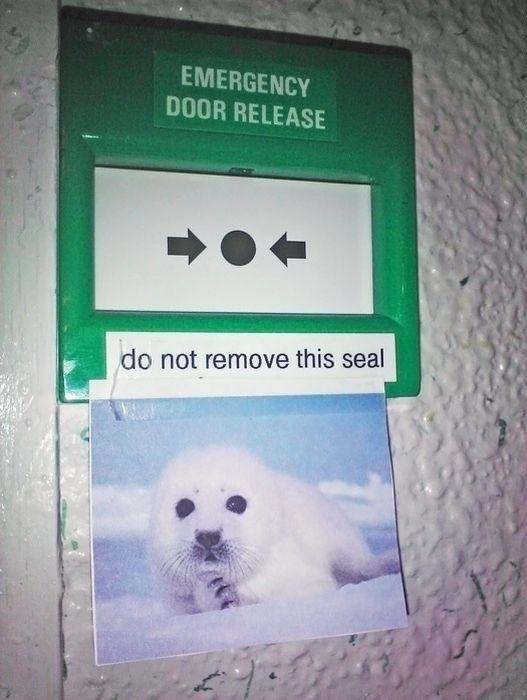 Hilarious Sign Defacement (40 pics)