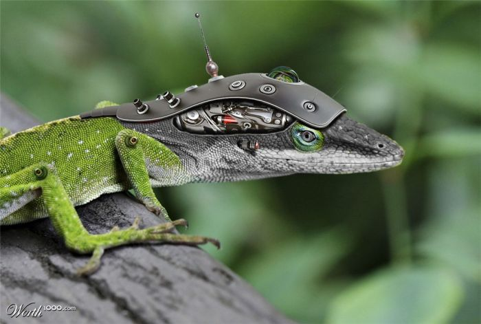 Incredible Robotic Animals Manipulations (38 pics)