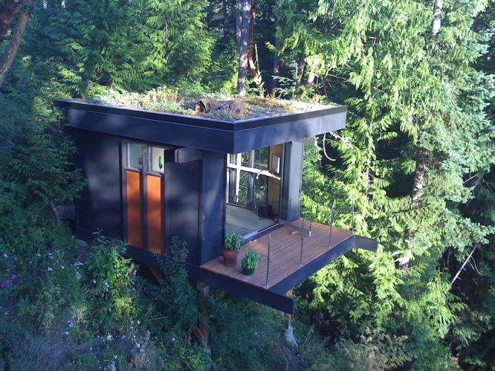 Nature View Office of Dreams (5 pics)