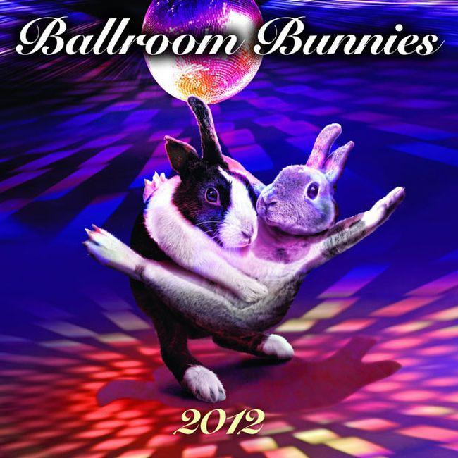 Cute Dancing Bunnies Calendar (13 pics)