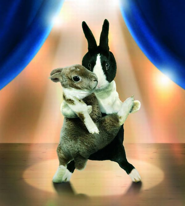 Cute Dancing Bunnies Calendar (13 pics)