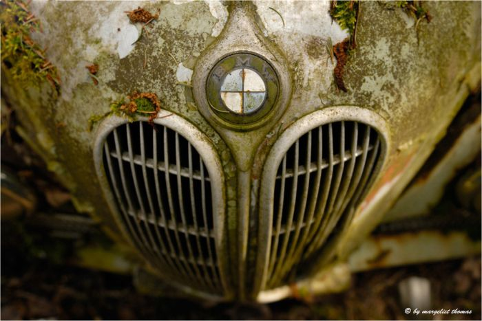 The Final Resting Place of 1000 Cars in Switzerland (28 pics)