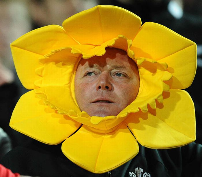 Hilarious 2011 Rugby World Cup Fans in New Zealand (33 pics)