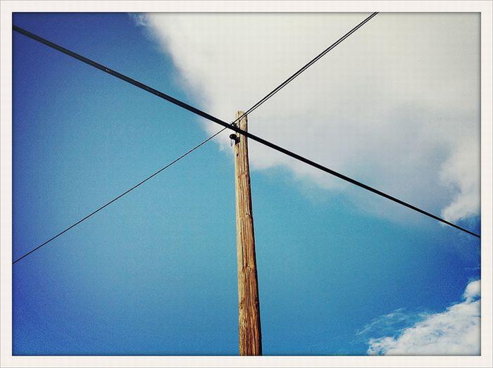 Mobile Phone Photography (86 pics)