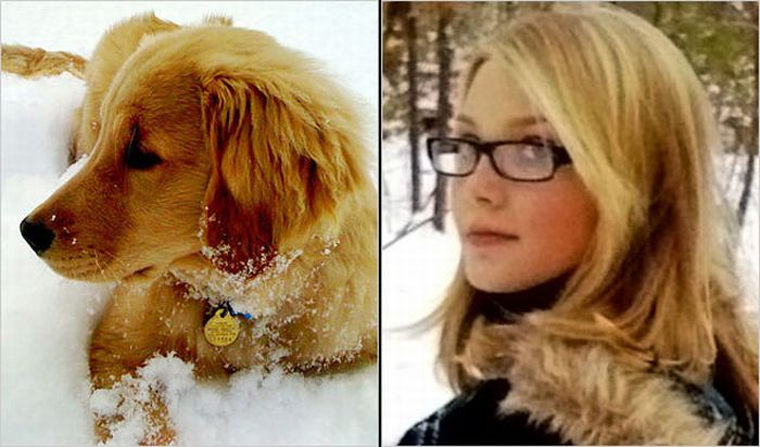 Dogs vs Dog Owners (52 pics)