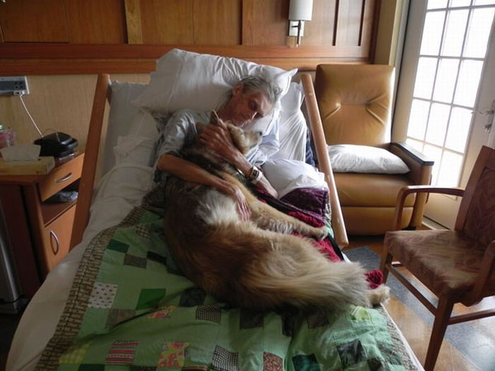 Dying Man's Final Wish (27 pics)
