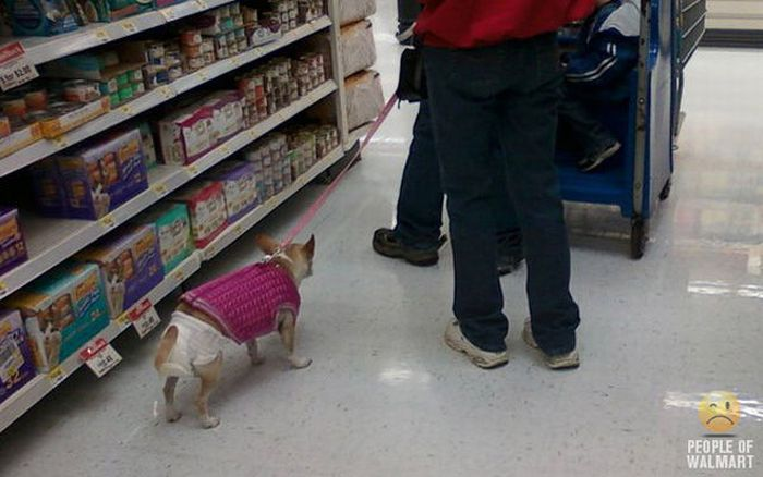 People of WalMart. Part 12 (46 pics)