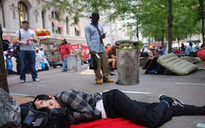 Occupy Wall Street Becomes Occupy Sesame Street (11 pics)