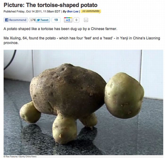 Weird Stuff in the News (38 pics + 2 videos)