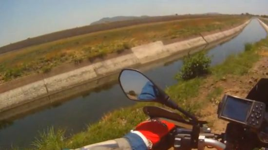 Biker Rescues a Calf From Drowning
