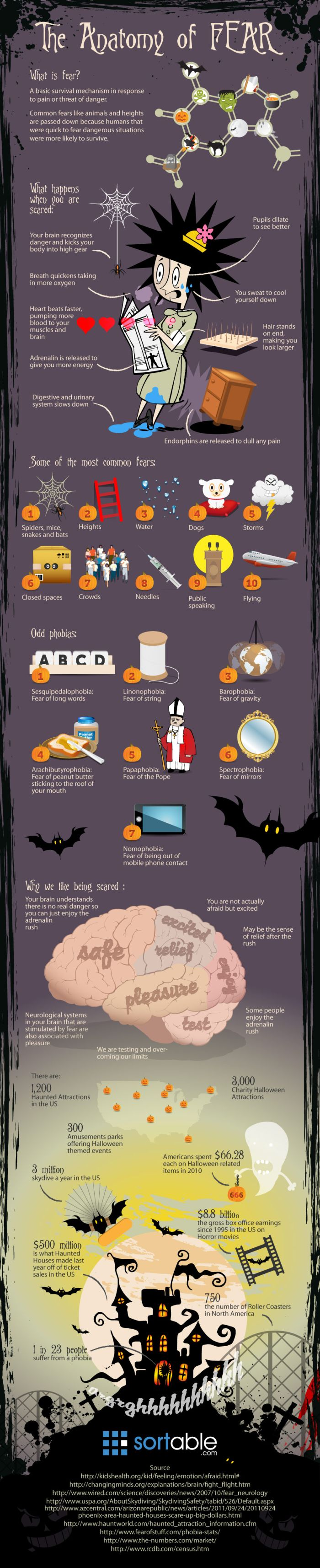 The Anatomy of Fear (infographic)
