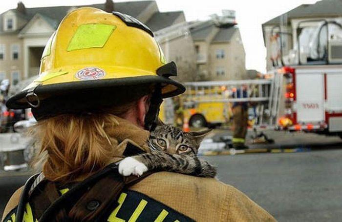 Rescate A Animalitos, Muy Emotivo!