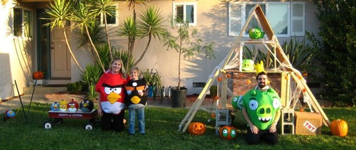 Angry Birds in the Yard (7 pics)