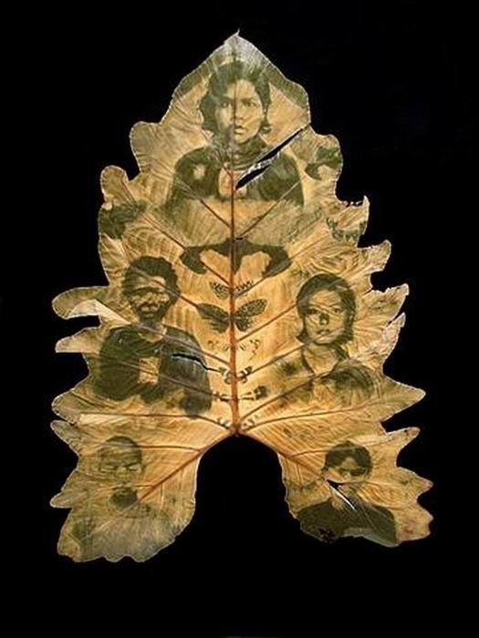 Photos on Leaves (14 pics)