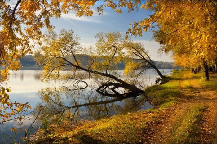 Beautiful Fall Photos (44 pics)