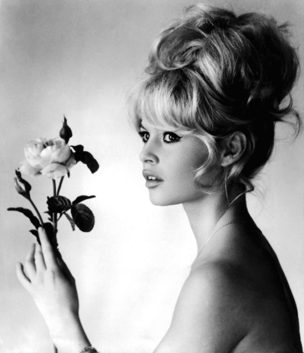 Brigitte Bardot Then and Now (16 pics)