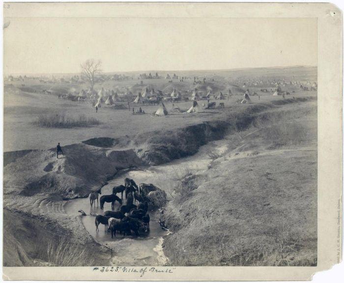 Vintage Photos of Wild West (20 pics)