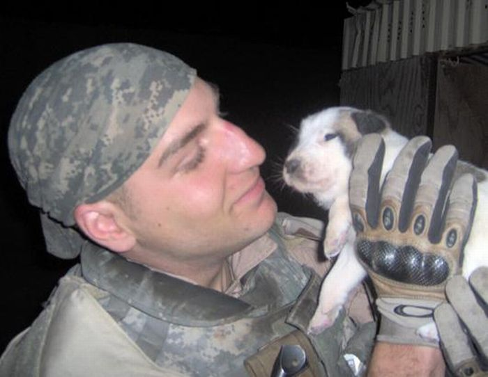 Dead Soldier's Puppy Became a Symbol of Hope for His Family (10 pics)