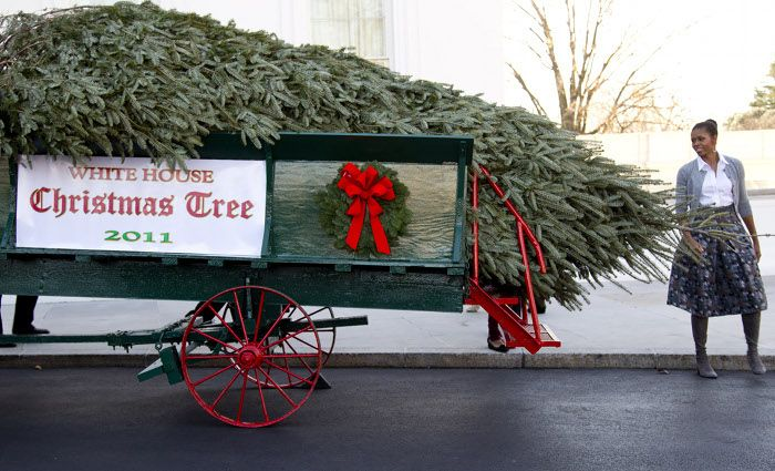 White House Gets a Christmas Tree (5 pics + video)