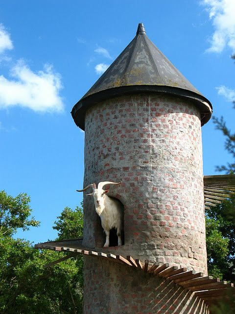 The Goat Tower (9 pics)