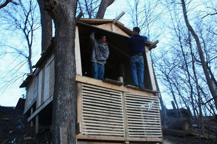 Construction of a Tree Fort (48 pics)