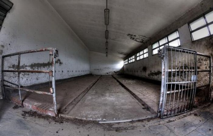 Abandoned Slaughterhouse in Florence (20 pics)