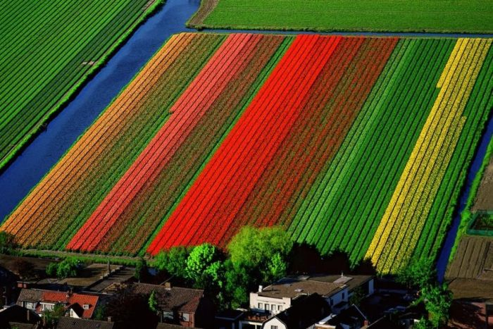 Awesome Examples Of Aerial Photography (119 pics)