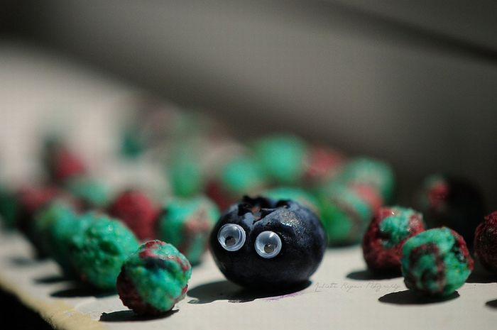 Fun with Fruits (33 pics)