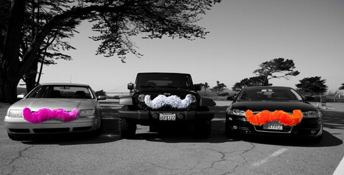 Cars with Mustaches (28 pics)