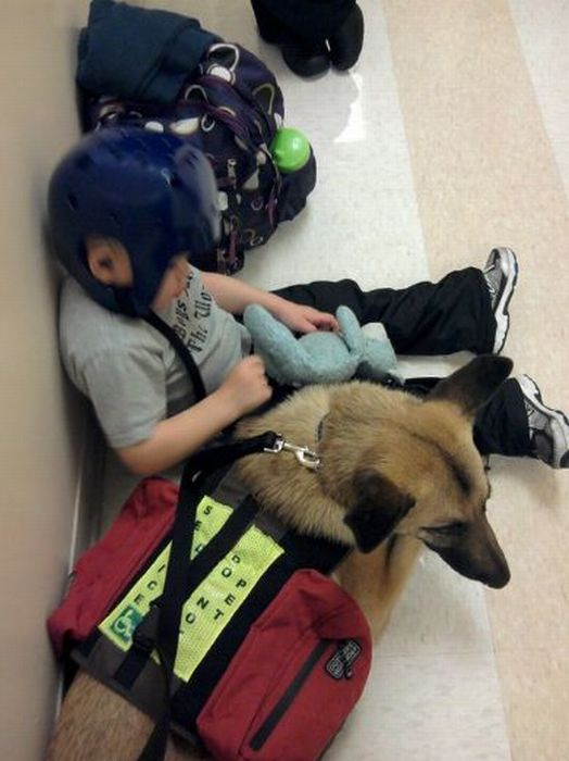 Lucas Hembree and his dog Juno (23 pics)