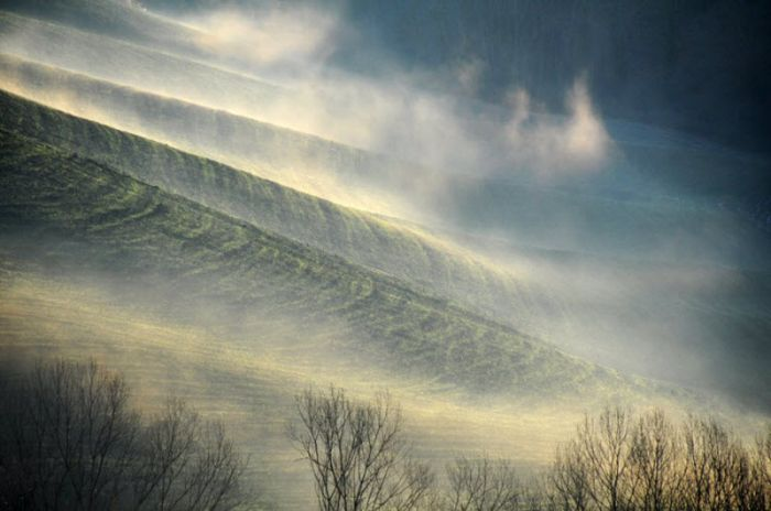 Fog (101 pics)