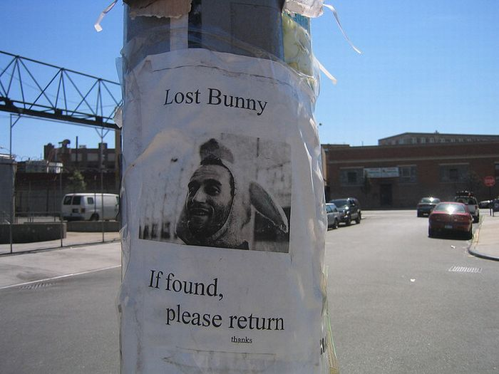 The Best of Lost And Found Signs. Part 2 (21 pics)