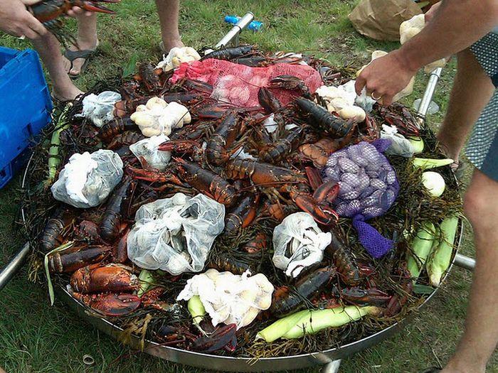 Giant Lobster Bake (13 pics)