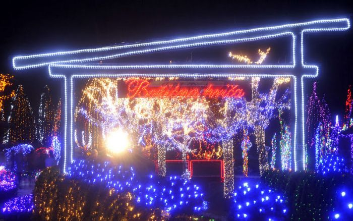 1.2 Million Christmas Lights (12 pics)