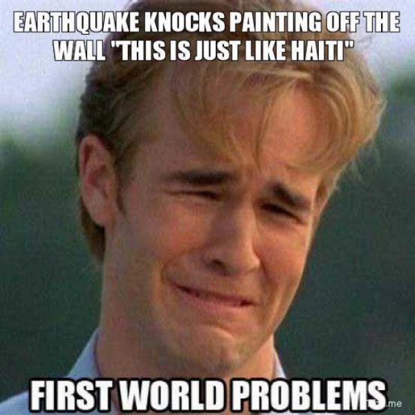 First World Problems (25 pics)
