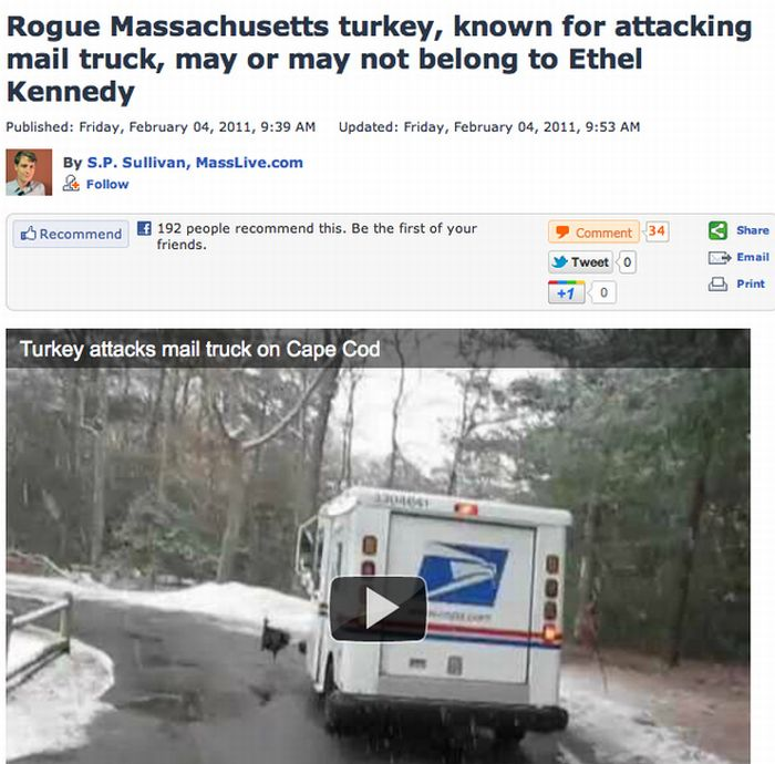 The Funniest Headlines Of 2011 (50 pics)