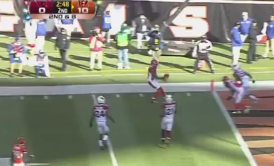 Incredible Jerome Simpson Touchdown