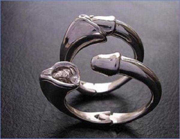 Creative Rings (55 pics)