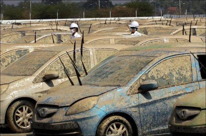 Crushed Honda Cars (10 pics)
