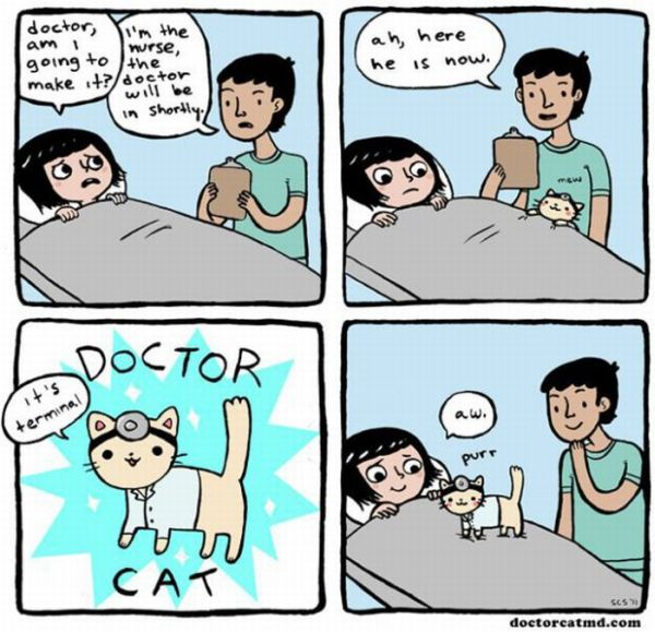 strip funny Comic and