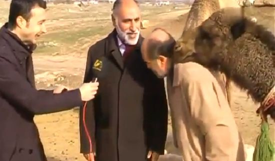 Nasty Camel Messed up The Interview