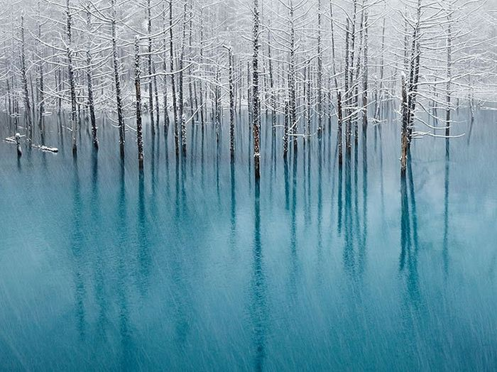 Breathtaking Photos (49 pics)